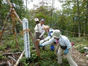 山記念植樹の雪害防止作業