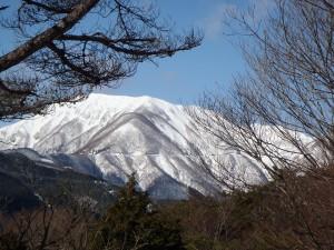山P1180039