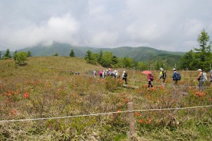 山DSC_0011